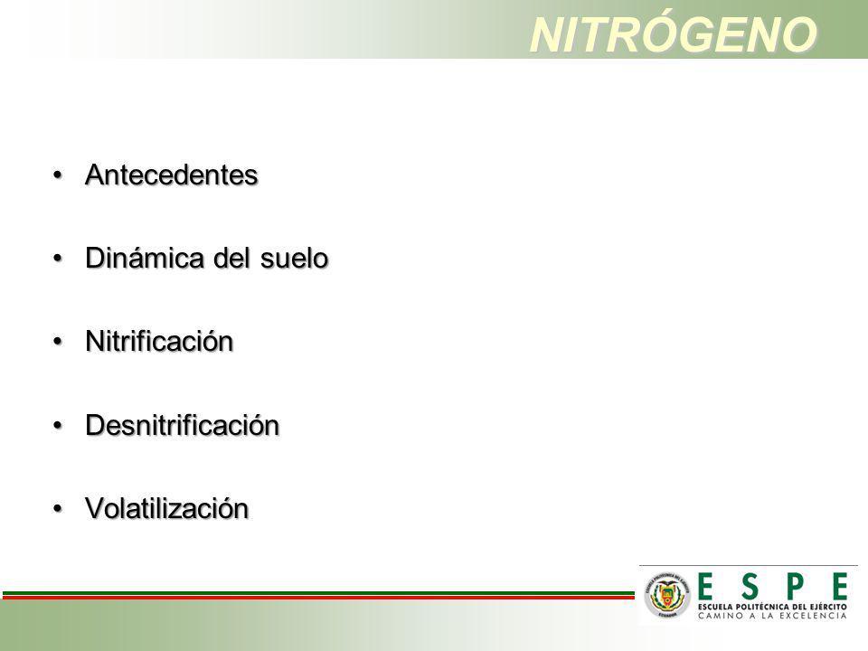 NITRÓGENO AntecedentesAntecedentes Dinámica del sueloDinámica del suelo NitrificaciónNitrificación DesnitrificaciónDesnitrificación VolatilizaciónVola