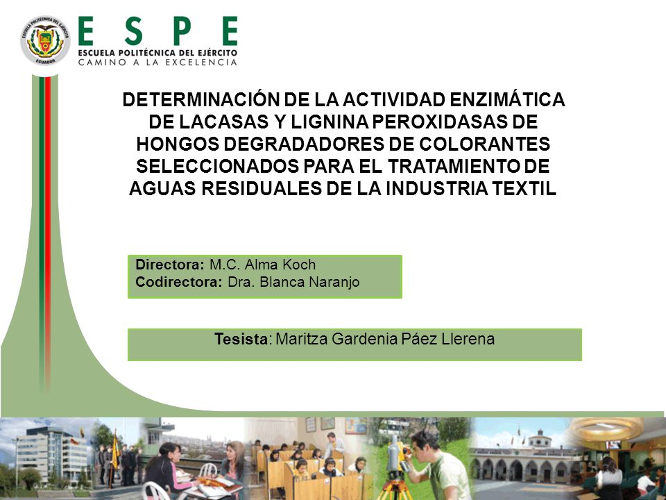 DETERMINACIÓN DE LA ACTIVIDAD ENZIMÁTICA DE LACASAS Y LIGNINA PEROXIDASAS DE HONGOS DEGRADADORES DE COLORANTES SELECCIONADOS PARA EL TRATAMIENTO DE AG