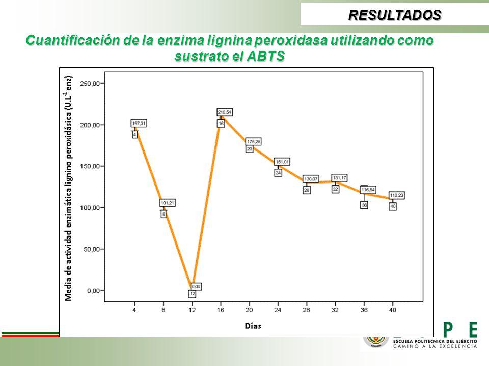 Cuantificación de la enzima lignina peroxidasa utilizando como sustrato el ABTS RESULTADOS