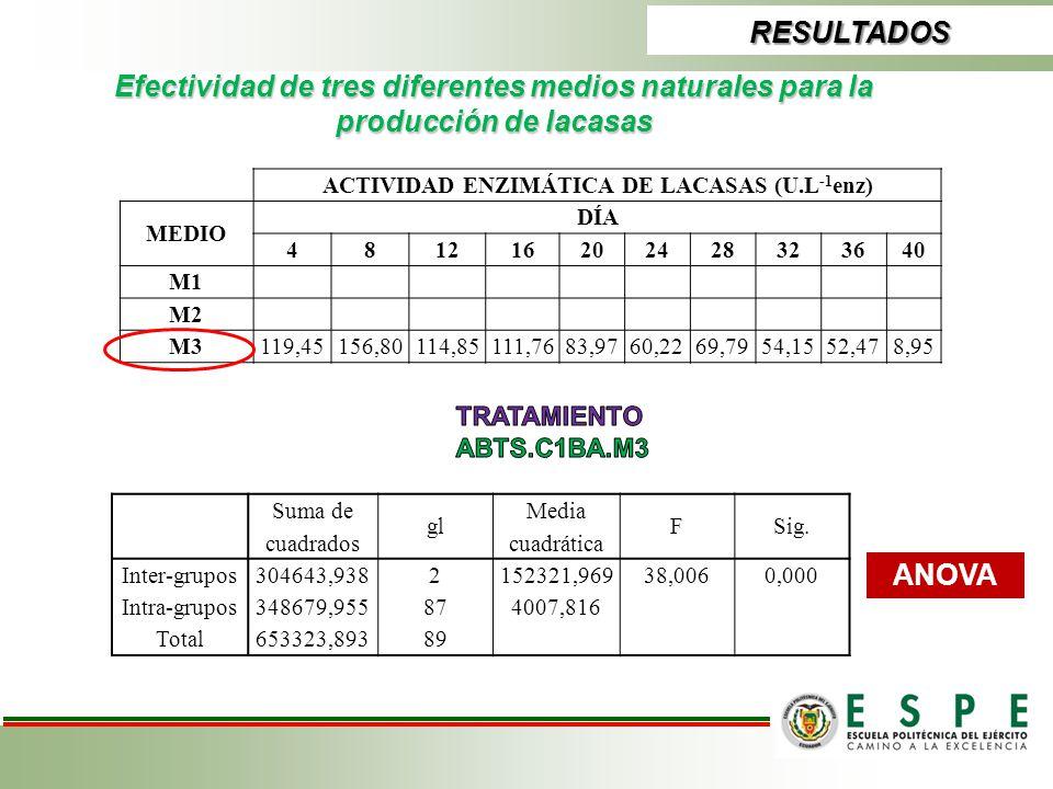 RESULTADOS Efectividad de tres diferentes medios naturales para la producción de lacasas ACTIVIDAD ENZIMÁTICA DE LACASAS (U.L -1 enz) MEDIO DÍA 481216