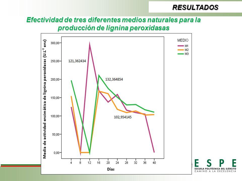 RESULTADOS Efectividad de tres diferentes medios naturales para la producción de lignina peroxidasas