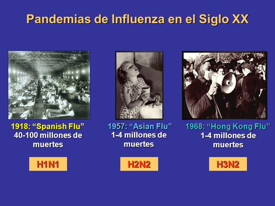 1918: Spanish Flu 1957: Asian Flu 1968: Hong Kong Flu 1-4 millones de muertes 40-100 millones de muertes Pandemias de Influenza en el Siglo XX H1N1H2N