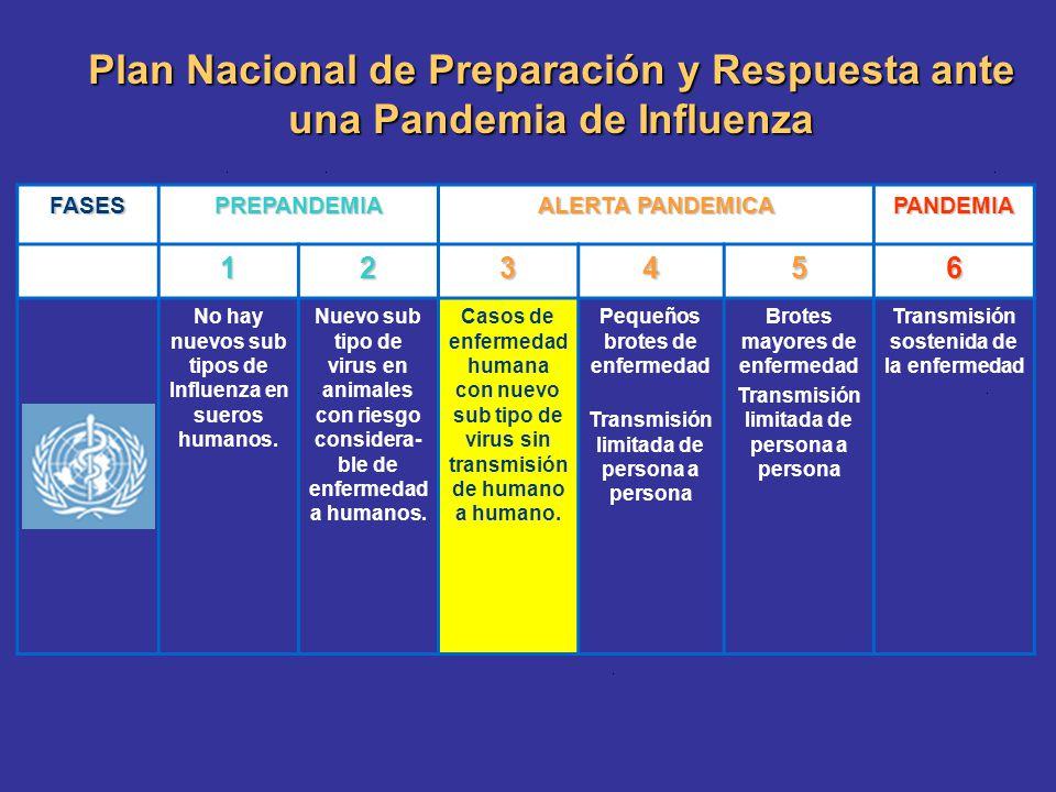 Plan Nacional de Preparación y Respuesta ante una Pandemia de Influenza FASESPREPANDEMIA ALERTA PANDEMICA PANDEMIA 123456 No hay nuevos sub tipos de I