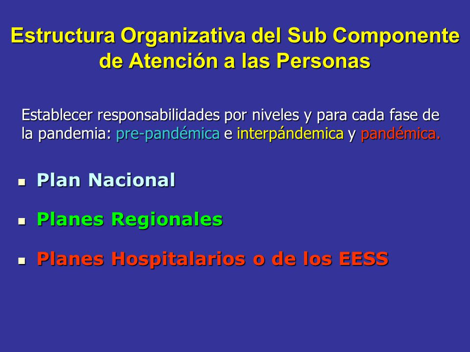 Estructura Organizativa del Sub Componente de Atención a las Personas Plan Nacional Plan Nacional Planes Regionales Planes Regionales Planes Hospitala