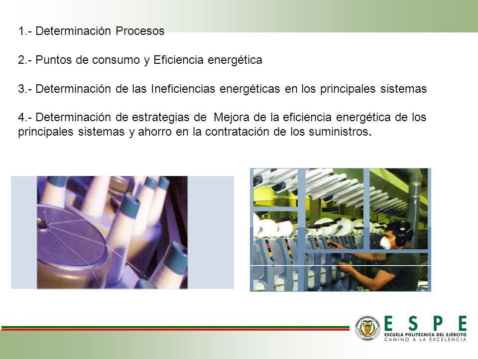 1.- Determinación Procesos 2.- Puntos de consumo y Eficiencia energética 3.- Determinación de las Ineficiencias energéticas en los principales sistema