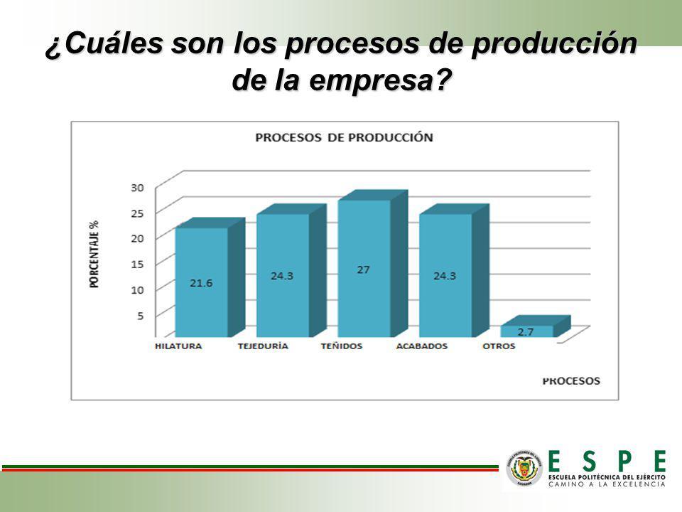 ¿Cuáles son los procesos de producción de la empresa?