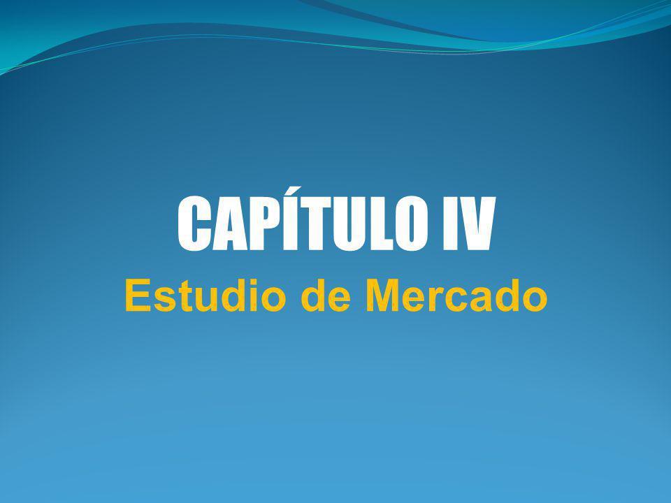 CAPÍTULO IV Estudio de Mercado