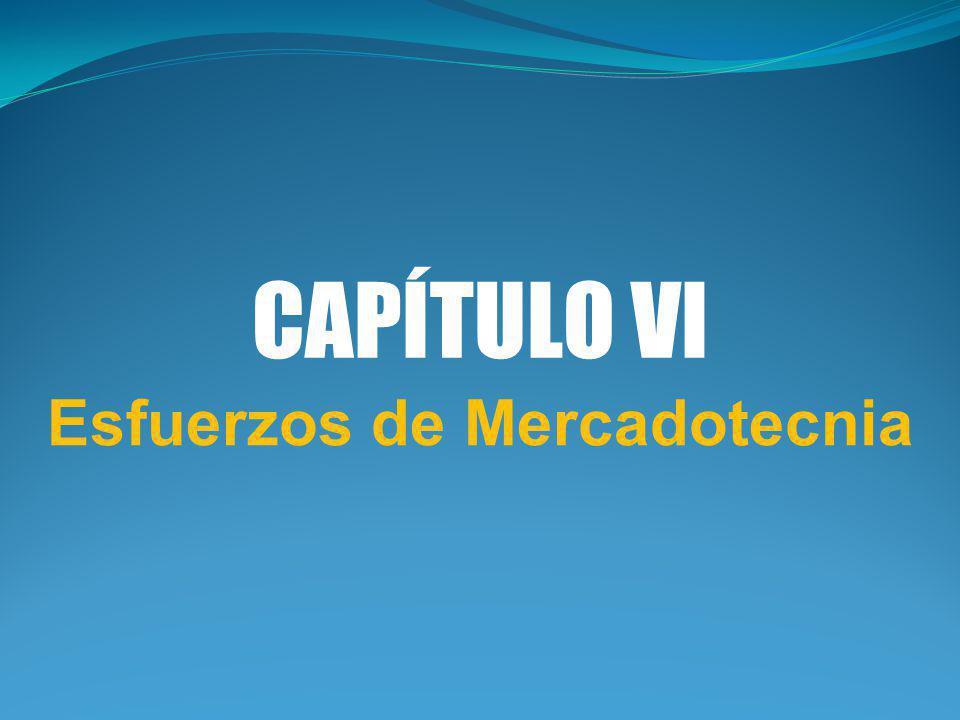 CAPÍTULO VI Esfuerzos de Mercadotecnia