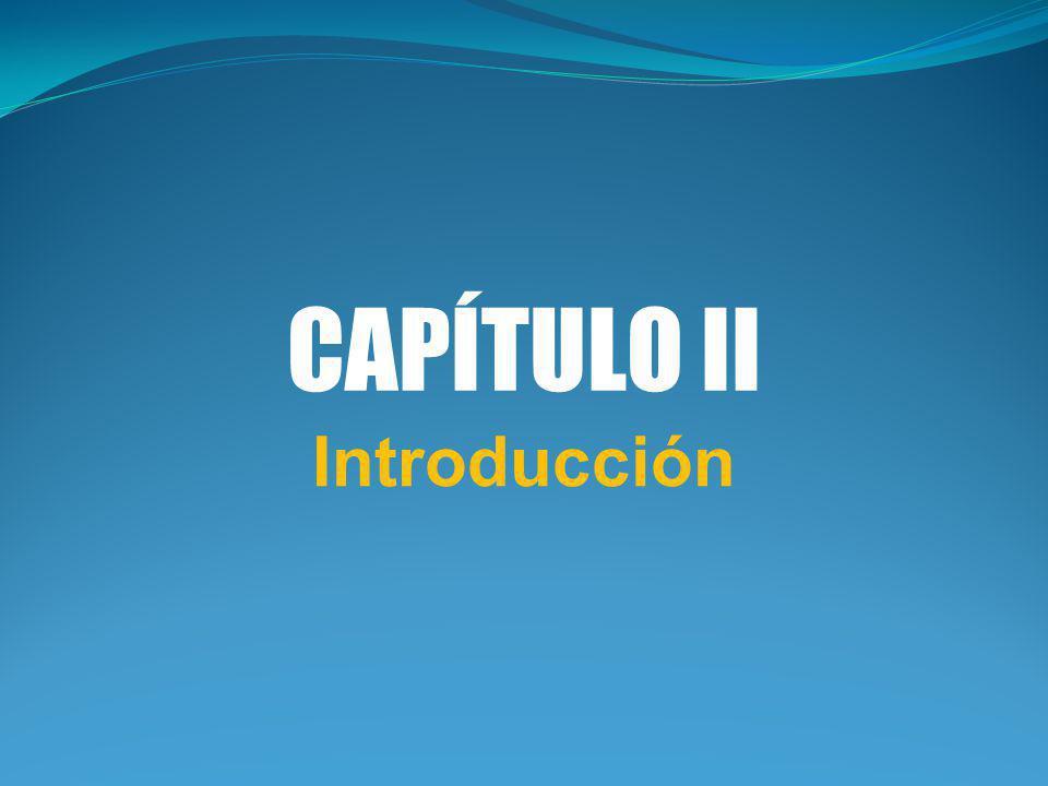 CAPÍTULO II Introducción