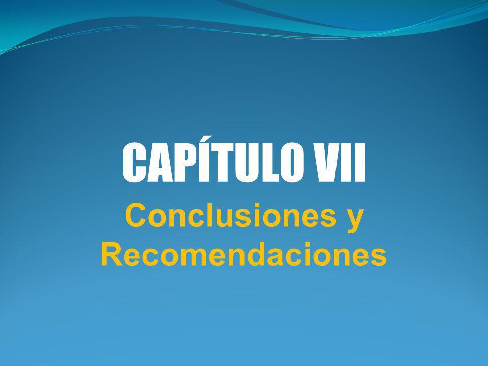 CAPÍTULO VII Conclusiones y Recomendaciones