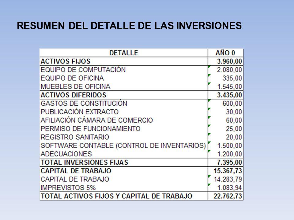 RESUMEN DEL DETALLE DE LAS INVERSIONES