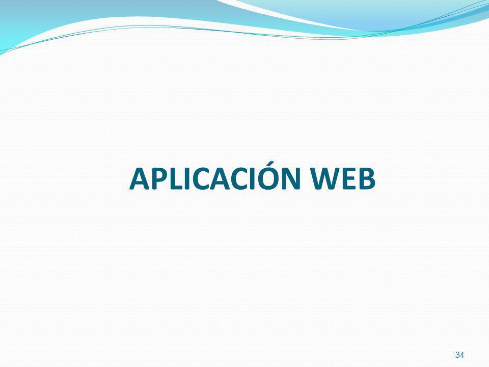 APLICACIÓN WEB 34