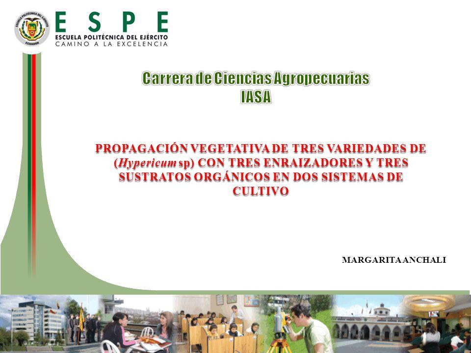 Tratamientos 50% Estopa de coco V1V1 E1E1 E2E2 E3E3 + 50% Tierra negra
