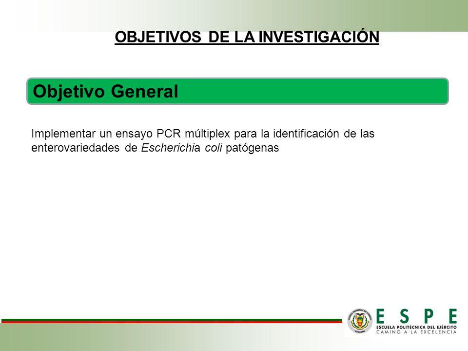 Objetivo General Implementar un ensayo PCR múltiplex para la identificación de las enterovariedades de Escherichia coli patógenas OBJETIVOS DE LA INVESTIGACIÓN