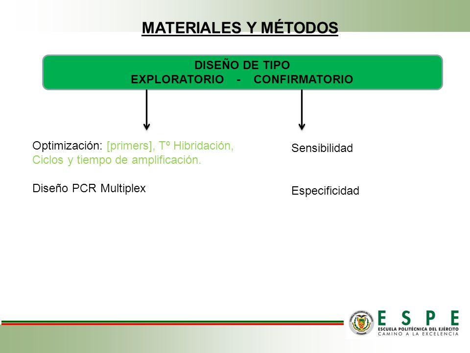 MATERIALES Y MÉTODOS DISEÑO DE TIPO EXPLORATORIO - CONFIRMATORIO Optimización: [primers], Tº Hibridación, Ciclos y tiempo de amplificación.