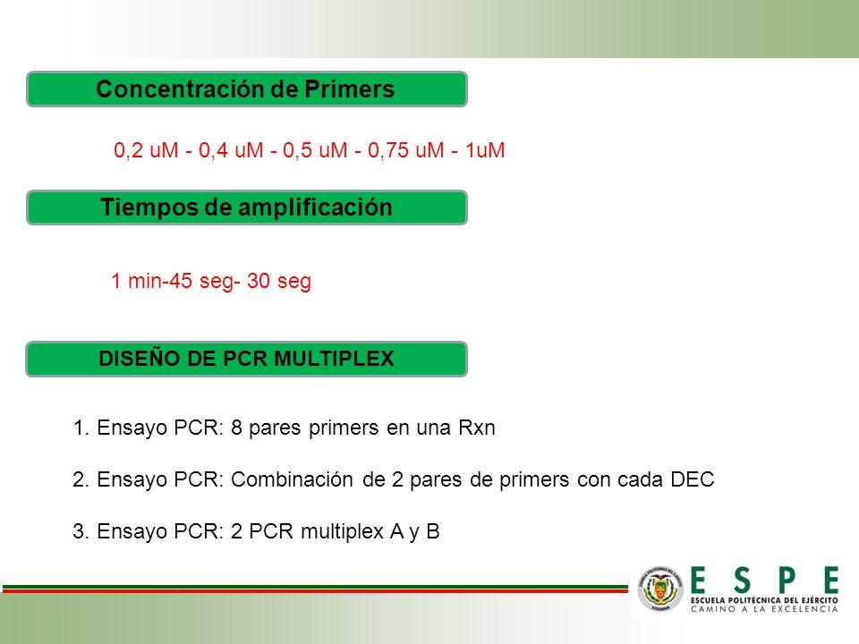 Concentración de Primers 0,2 uM - 0,4 uM - 0,5 uM - 0,75 uM - 1uM DISEÑO DE PCR MULTIPLEX 1.