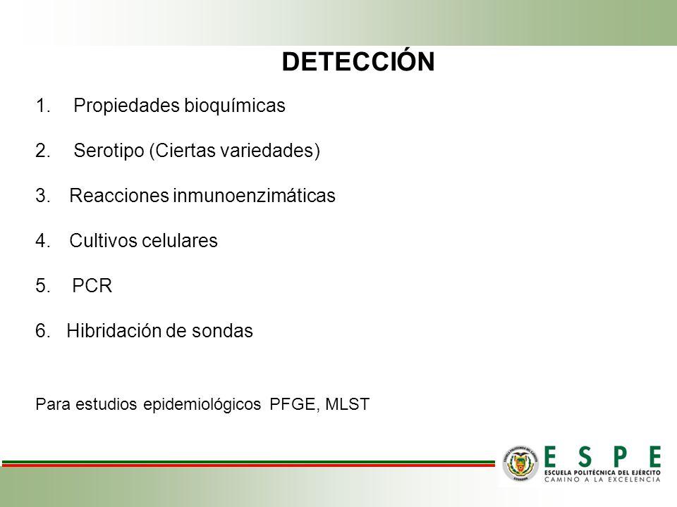 DETECCIÓN 1.Propiedades bioquímicas 2.Serotipo (Ciertas variedades) 3.Reacciones inmunoenzimáticas 4.Cultivos celulares 5.