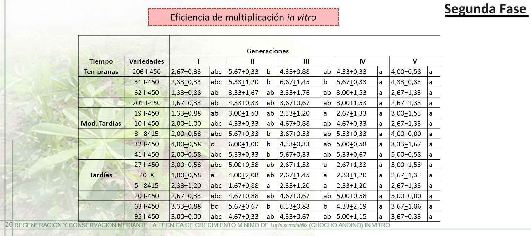 Segunda Fase Eficiencia de multiplicación in vitro Generaciones TiempoVariedadesIIIIIIIVV Tempranas206 I-4502,67+0,33abc5,67+0,33b4,33+0,88 ab4,33+0,3