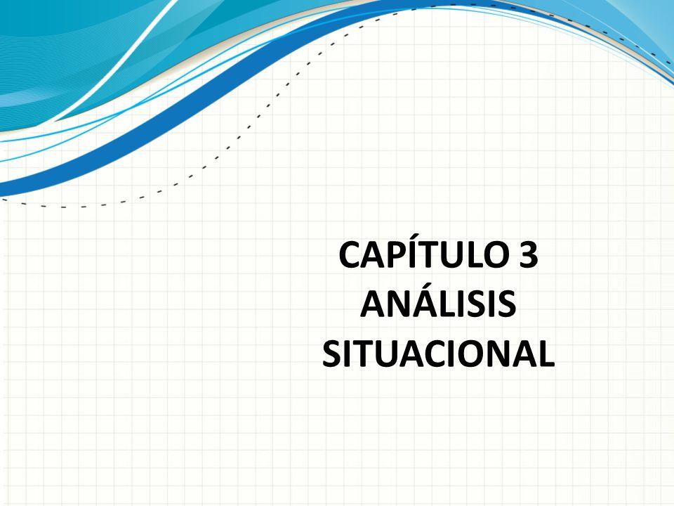 CAPÍTULO 3 ANÁLISIS SITUACIONAL