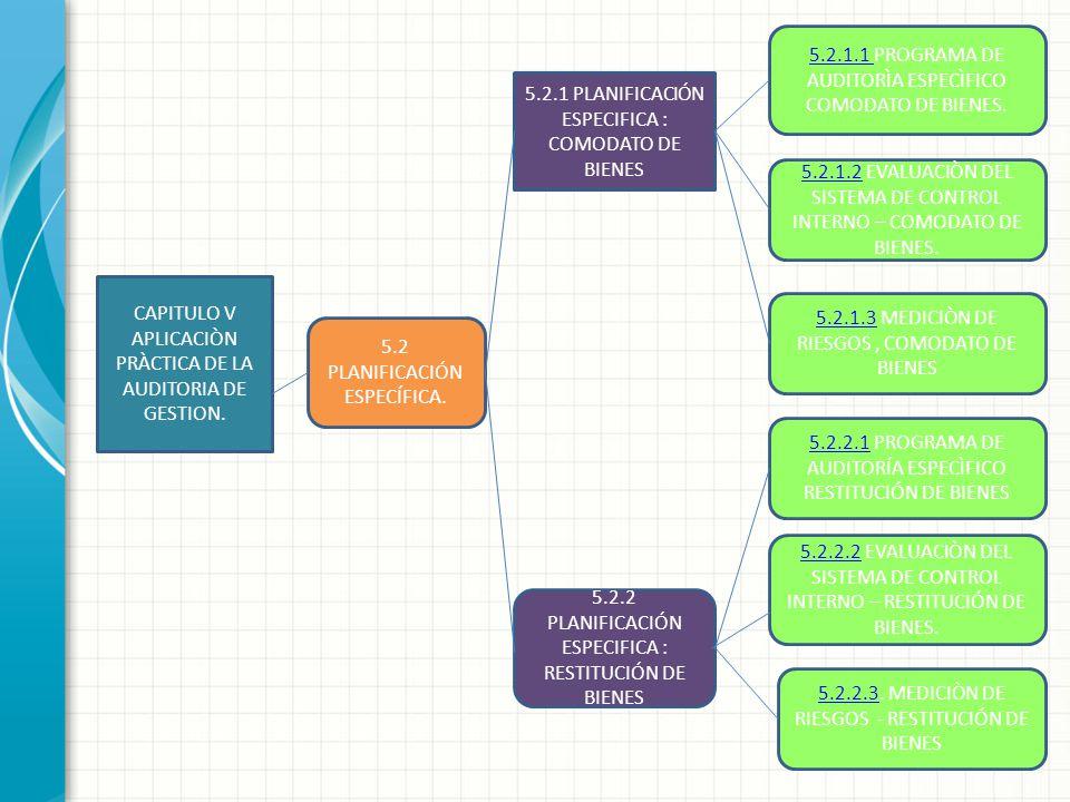 CAPITULO V APLICACIÒN PRÀCTICA DE LA AUDITORIA DE GESTION. 5.2.1 PLANIFICACIÓN ESPECIFICA : COMODATO DE BIENES 5.2 PLANIFICACIÓN ESPECÍFICA. 5.2.2 PLA