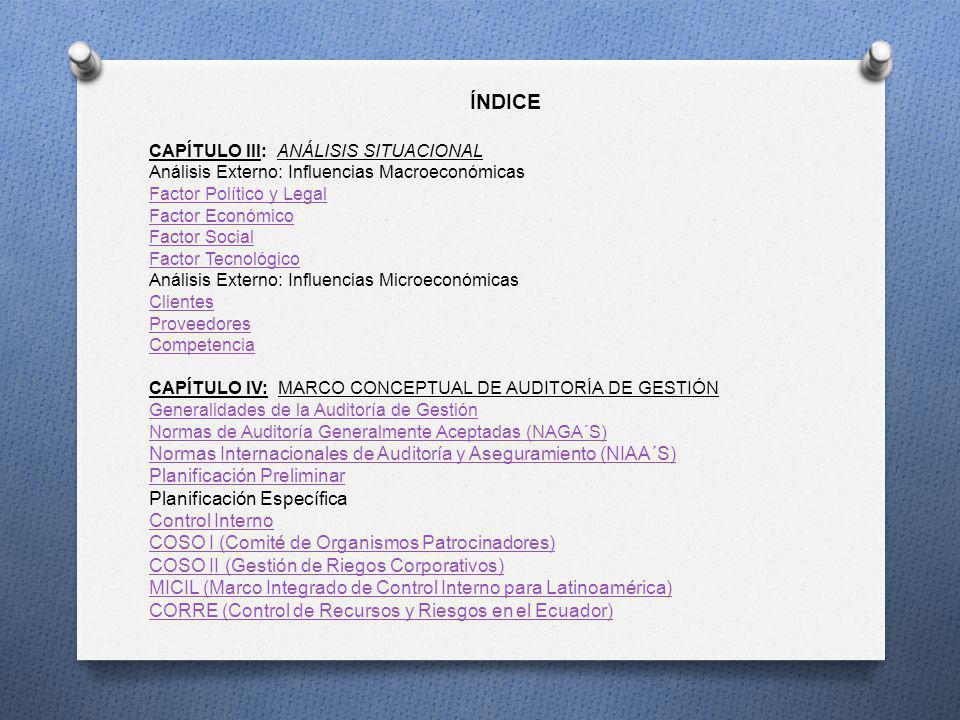ÍNDICE CAPÍTULO IV: MARCO CONCEPTUAL DE AUDITORÍA DE GESTIÓN Herramientas de Control Interno Medición del Riesgo Programa de Auditoría Ejecución y Comunicación de Resultados CAPÍTULO V PLANIFICACIÓN PRELIMINAR Programa Preliminar de Auditoría Medición del Riesgo Inherente Plan Global de Auditoría PLANIFICACIÓN ESPECÍFICA/EJECUCIÓN Evaluación del Control Interno del Área de Recursos Humanos Evaluación del Control Interno del Área de Compras Evaluación del Control Interno del Área de Ventas Programa y Ejecución de Auditoría de los Procesos del Área de Recursos Humanos Programa y Ejecución de Auditoría de los Procesos del Área de Compras Programa y Ejecución de Auditoría de los Procesos del Área de Ventas COMUNICACIÓN DE RESULTADOS Informe de Control Interno Informe de Auditoría CONCLUSIONES RECOMENDACIONESRECOMENDACIONE BIBLIOGRAFÍA