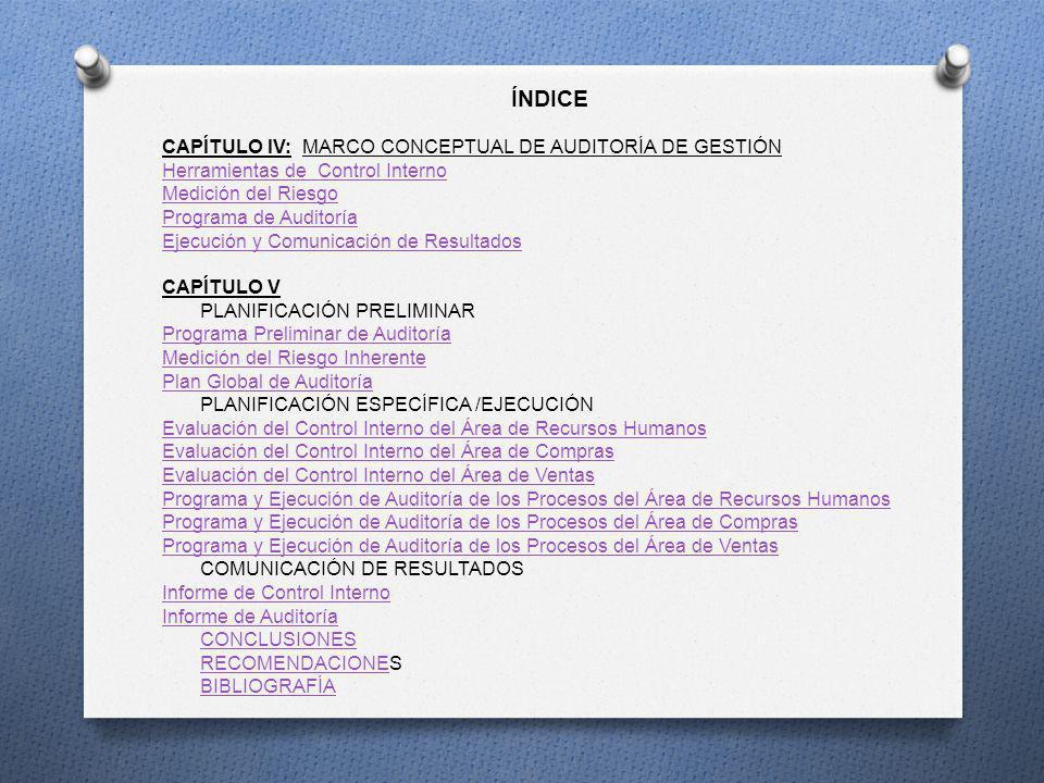 ÍNDICE CAPÍTULO IV: MARCO CONCEPTUAL DE AUDITORÍA DE GESTIÓN Herramientas de Control Interno Medición del Riesgo Programa de Auditoría Ejecución y Com