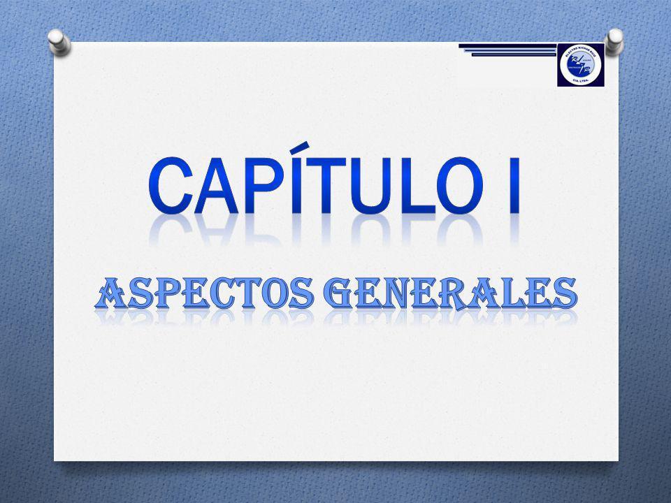 1.1 ANTECEDENTES Está constituida de acuerdo a la Ley de Compañías en el año 2008 en la ciudad de Quito, desde entonces se ha realizado un gran esfuerzo por evolucionar, y alcanzar la excelencia en el servicio a sus clientes.