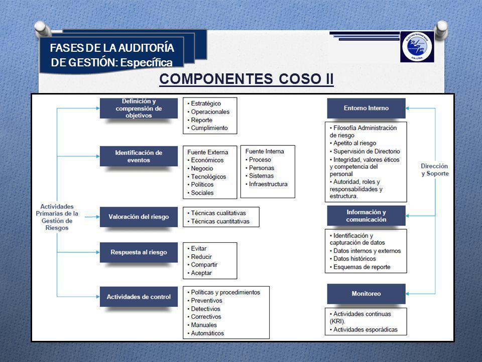 COMPONENTES COSO II FASES DE LA AUDITORÍA DE GESTIÓN: Específica