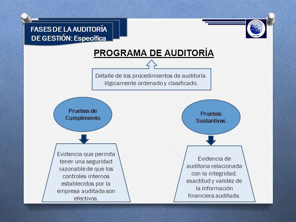 FASES DE LA AUDITORÍA DE GESTIÓN: Específica PROGRAMA DE AUDITORÍA Detalle de los procedimientos de auditoría, lógicamente ordenado y clasificado, Pru