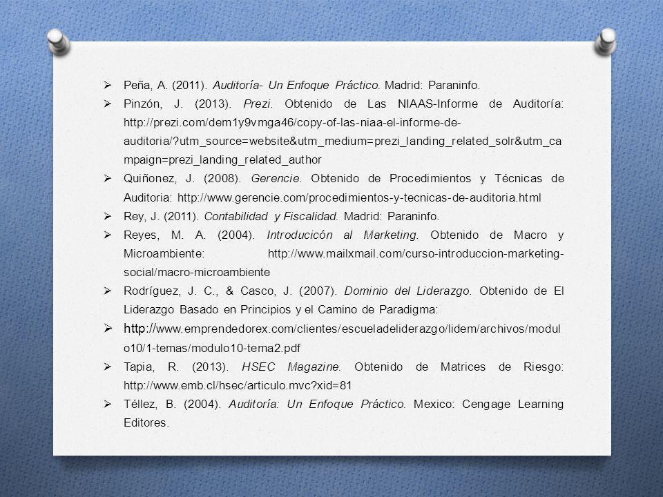 Peña, A. (2011). Auditoría- Un Enfoque Práctico. Madrid: Paraninfo. Pinzón, J. (2013). Prezi. Obtenido de Las NIAAS-Informe de Auditoría: http://prezi