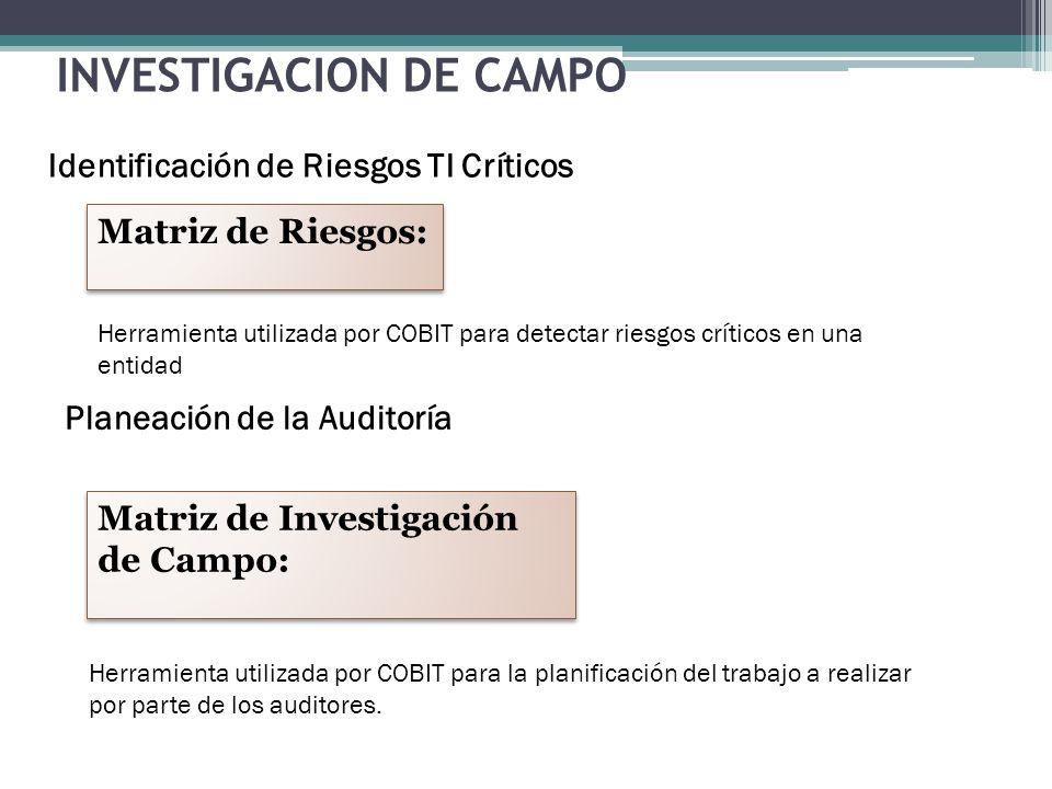 INVESTIGACION DE CAMPO Identificación de Riesgos TI Críticos Matriz de Riesgos: Matriz de Investigación de Campo: Matriz de Investigación de Campo: He