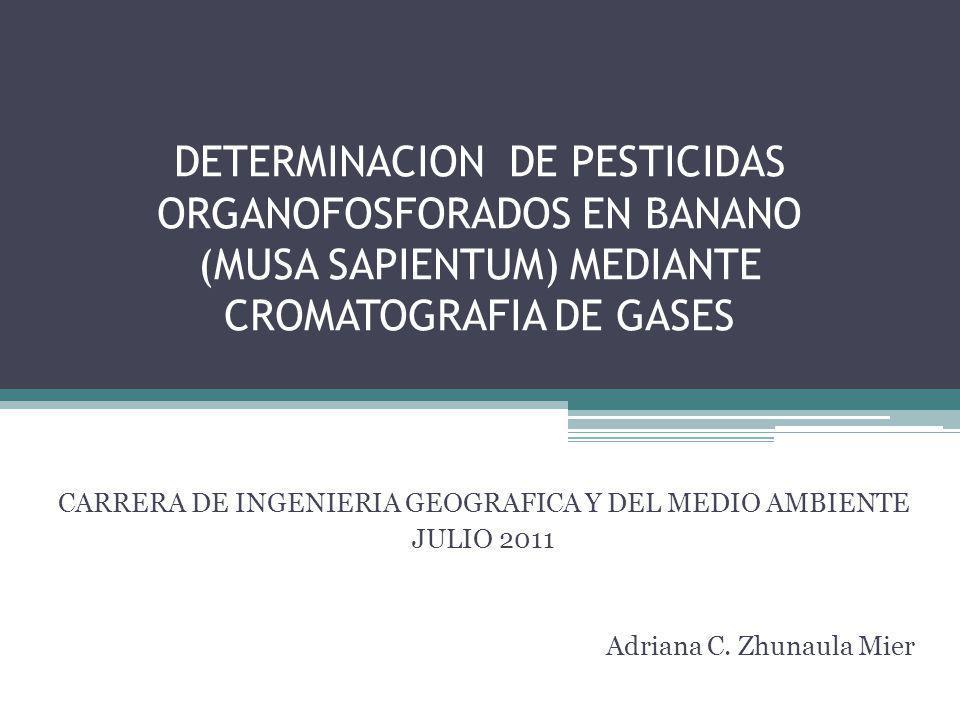 DETERMINACION DE PESTICIDAS ORGANOFOSFORADOS EN BANANO (MUSA SAPIENTUM) MEDIANTE CROMATOGRAFIA DE GASES Adriana C. Zhunaula Mier CARRERA DE INGENIERIA