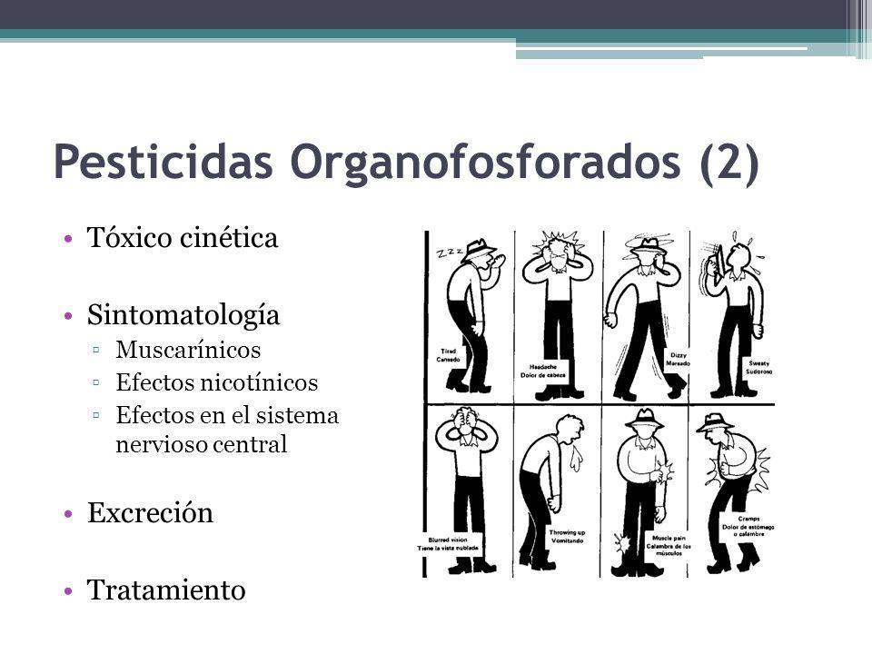 Pesticidas Organofosforados (2) Tóxico cinética Sintomatología Muscarínicos Efectos nicotínicos Efectos en el sistema nervioso central Excreción Trata