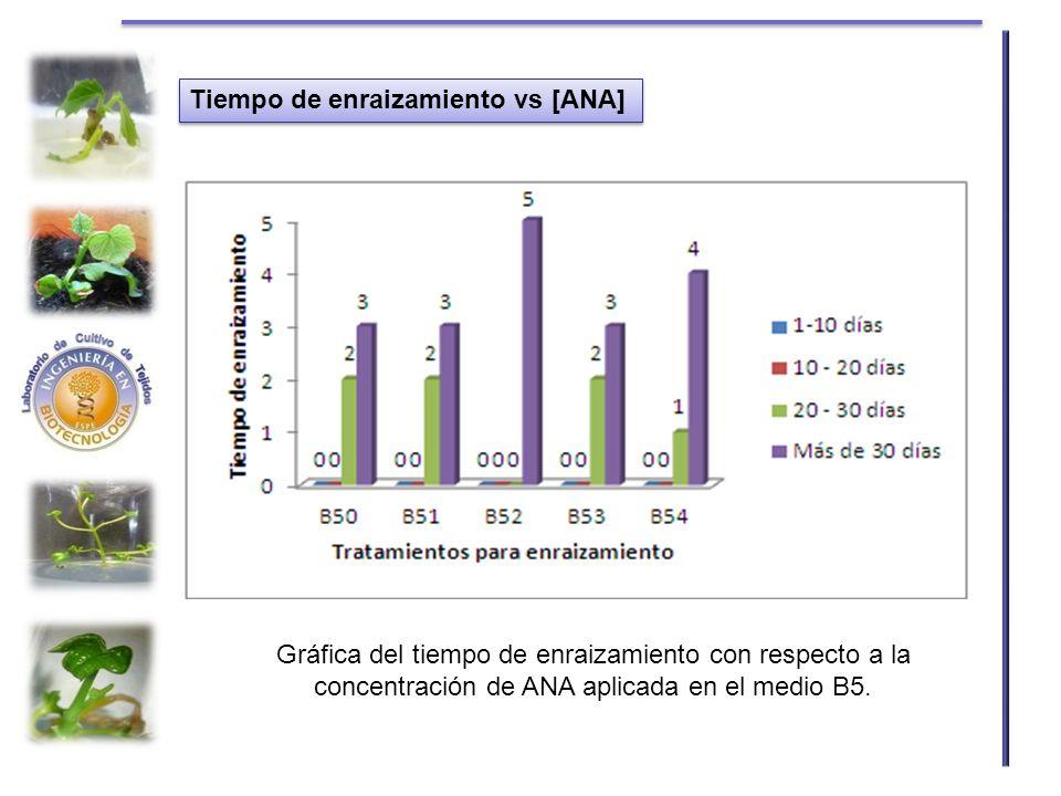 Tiempo de enraizamiento vs [ANA] Gráfica del tiempo de enraizamiento con respecto a la concentración de ANA aplicada en el medio B5.