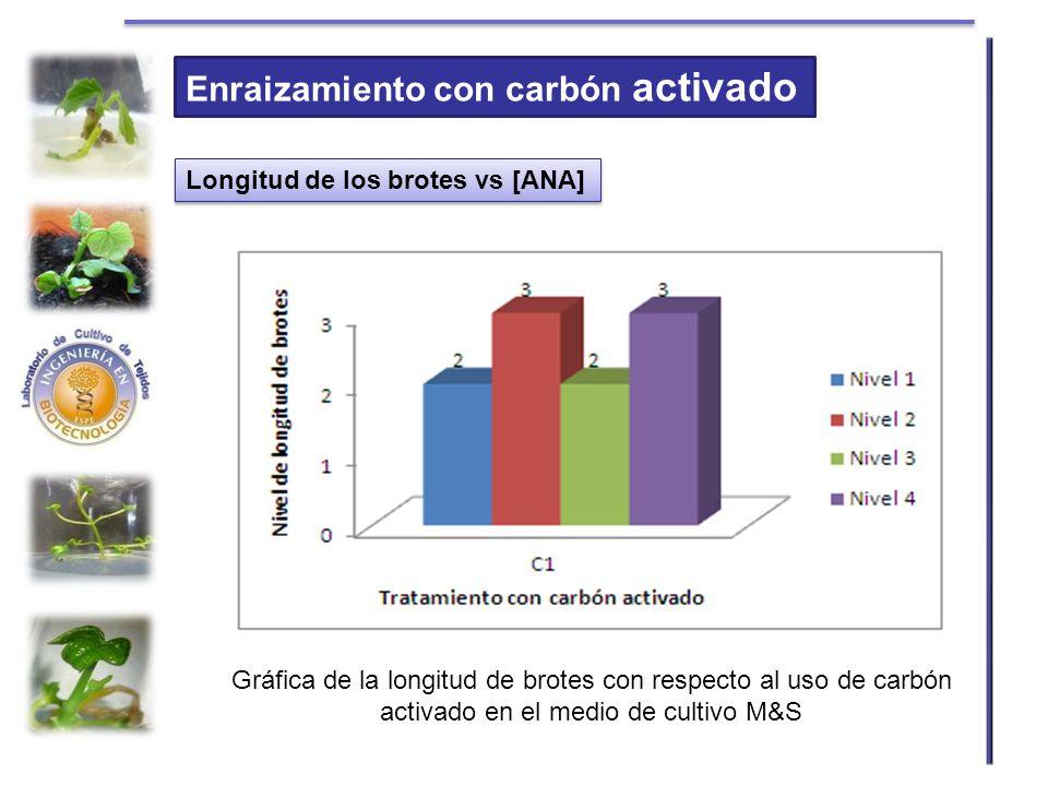 Enraizamiento con carbón activado Longitud de los brotes vs [ANA] Gráfica de la longitud de brotes con respecto al uso de carbón activado en el medio