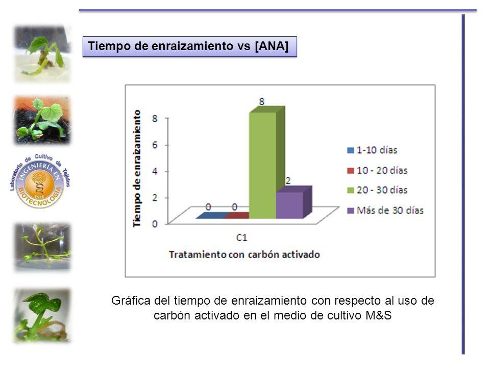 Tiempo de enraizamiento vs [ANA] Gráfica del tiempo de enraizamiento con respecto al uso de carbón activado en el medio de cultivo M&S