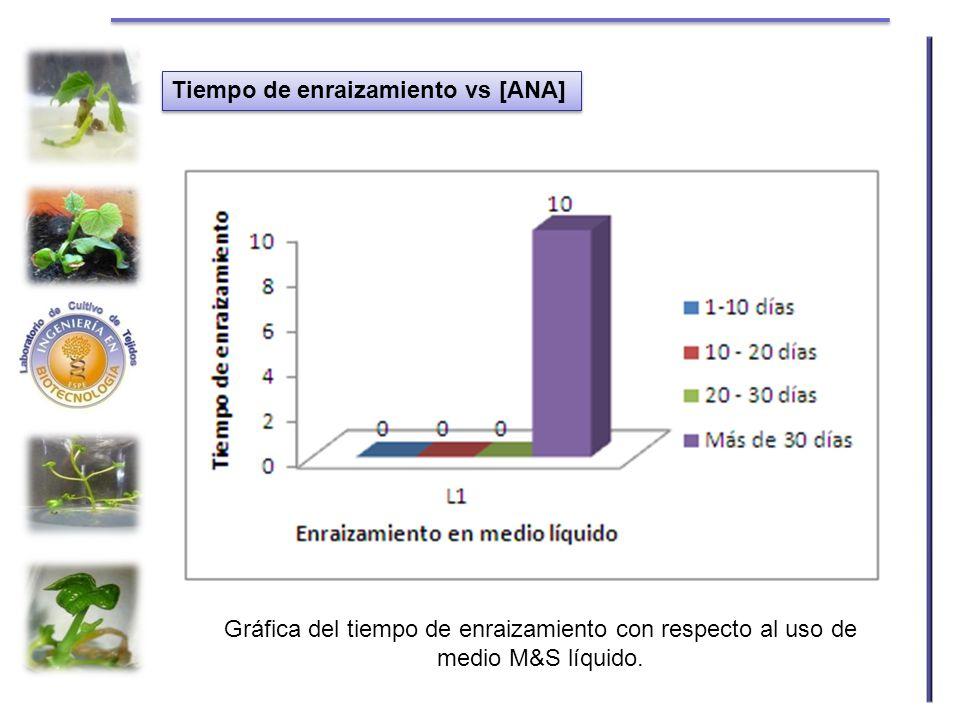 Tiempo de enraizamiento vs [ANA] Gráfica del tiempo de enraizamiento con respecto al uso de medio M&S líquido.