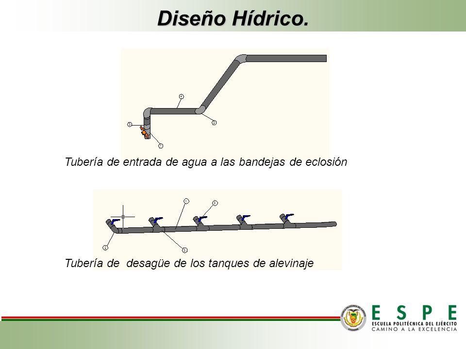 Diseño Hídrico. Tubería de entrada de agua a las bandejas de eclosión Tubería de desagüe de los tanques de alevinaje