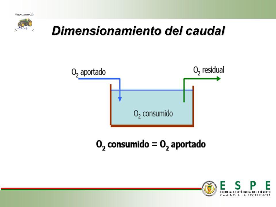 Dimensionamiento del caudal