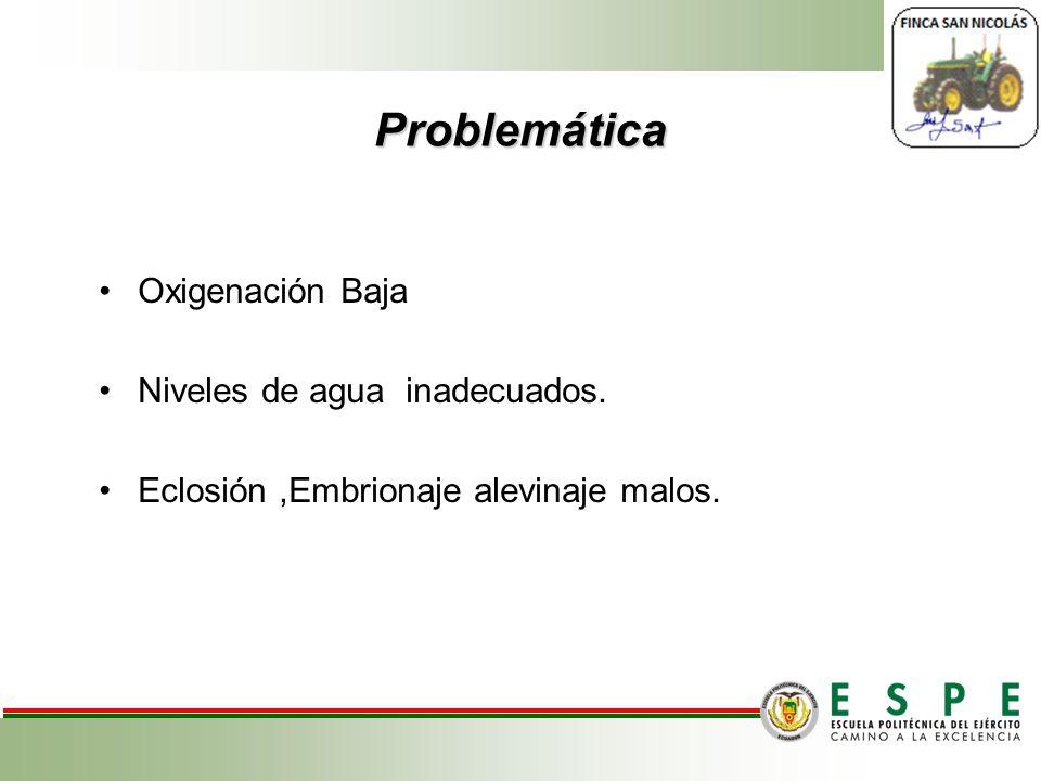 Problemática Oxigenación Baja Niveles de agua inadecuados. Eclosión,Embrionaje alevinaje malos.