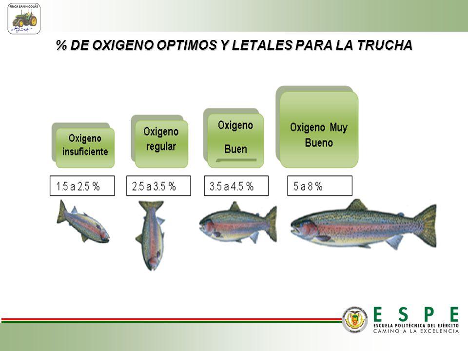 % DE OXIGENO OPTIMOS Y LETALES PARA LA TRUCHA Pre-Amasado.