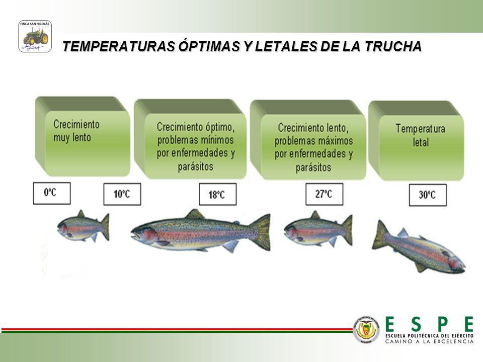 TEMPERATURAS ÓPTIMAS Y LETALES DE LA TRUCHA Pre-Amasado.