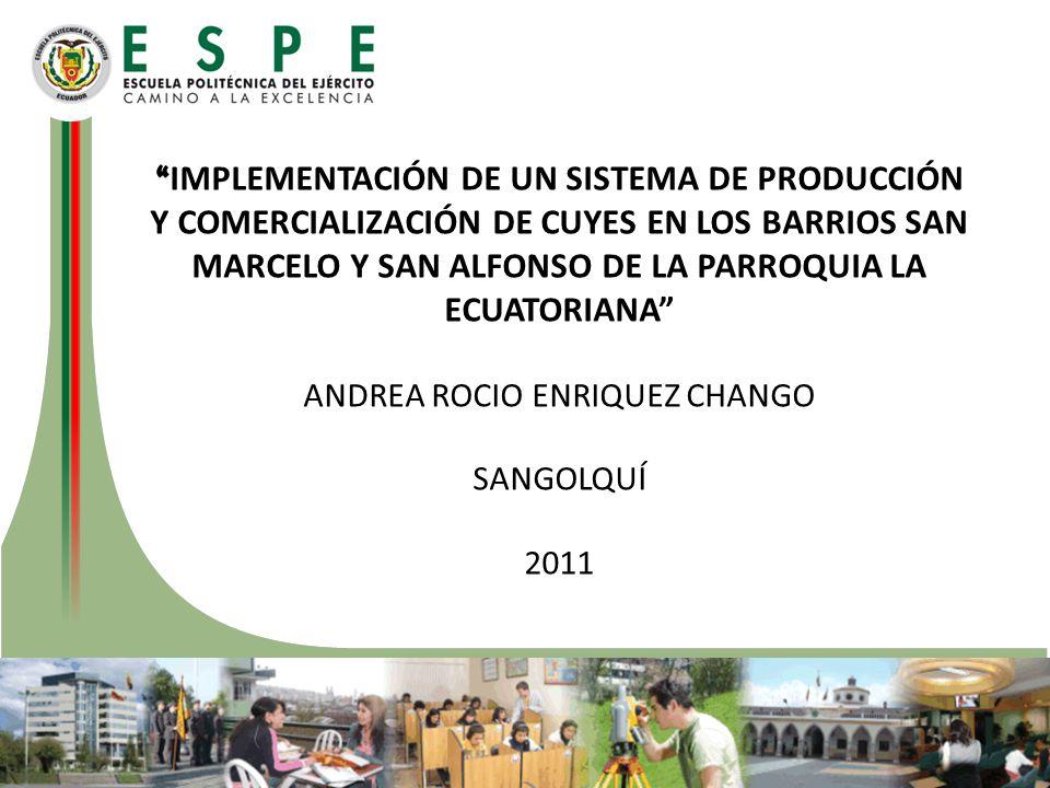 IMPLEMENTACIÓN DE UN SISTEMA DE PRODUCCIÓN Y COMERCIALIZACIÓN DE CUYES EN LOS BARRIOS SAN MARCELO Y SAN ALFONSO DE LA PARROQUIA LA ECUATORIANA ANDREA ROCIO ENRIQUEZ CHANGO SANGOLQUÍ 2011
