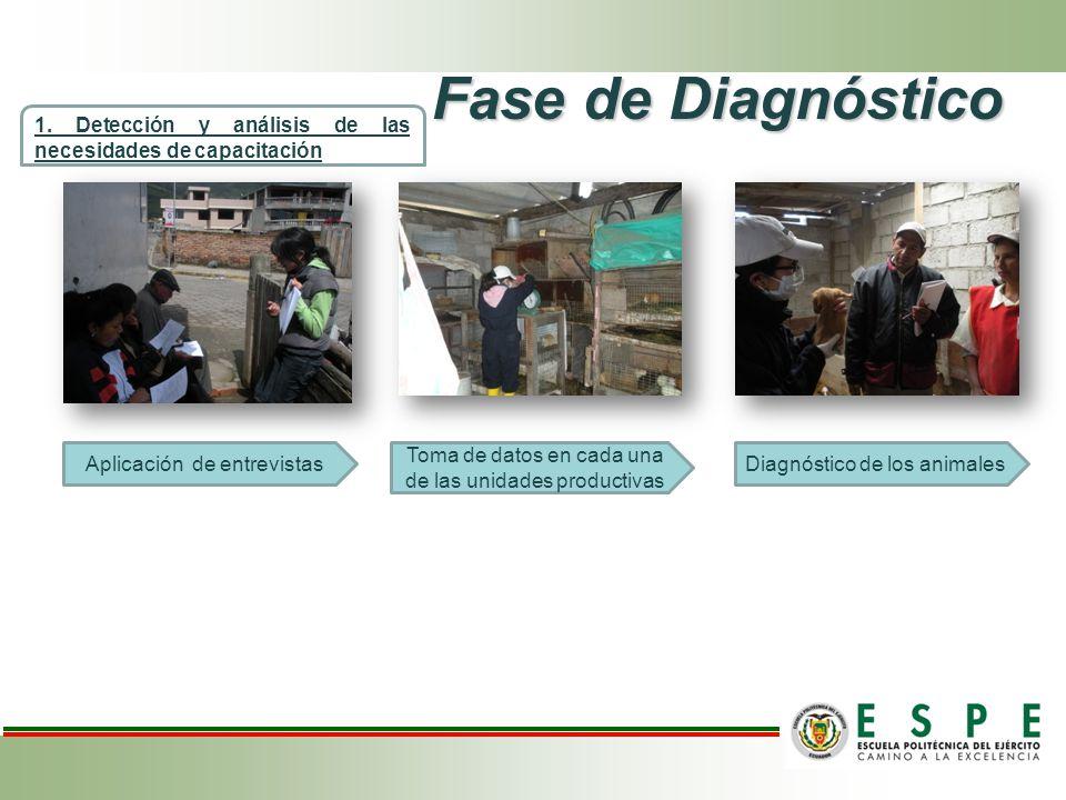 Fase de Diagnóstico Aplicación de entrevistas 1. Detección y análisis de las necesidades de capacitación Toma de datos en cada una de las unidades pro