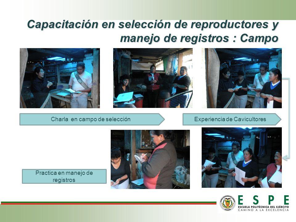 Capacitación en selección de reproductores y manejo de registros : Campo Charla en campo de selecciónExperiencia de Cavicultores Practica en manejo de