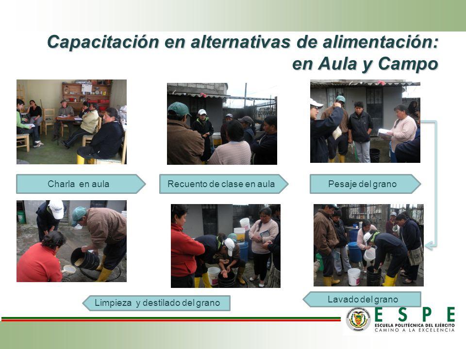 Capacitación en alternativas de alimentación: en Aula y Campo Charla en aulaRecuento de clase en aulaPesaje del grano Lavado del grano Limpieza y dest