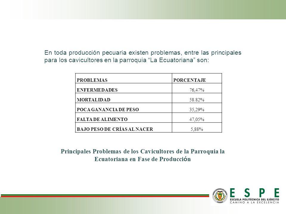 PROBLEMASPORCENTAJE ENFERMEDADES76,47% MORTALIDAD58.82% POCA GANANCIA DE PESO35,29% FALTA DE ALIMENTO47,05% BAJO PESO DE CRÍAS AL NACER5,88% En toda producción pecuaria existen problemas, entre las principales para los cavicultores en la parroquia La Ecuatoriana son: Principales Problemas de los Cavicultores de la Parroquia la Ecuatoriana en Fase de Producci ó n