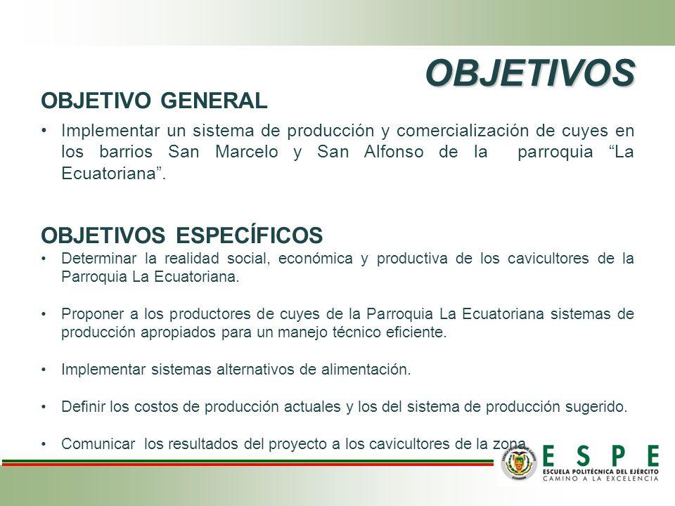 TABULACION DE DATOS OBTENIDOS Análisis de Estabilidad Modificado de Hildembrant Para % Mortalidad en Reproductores (Empadre) ESTADISTICA DESCRIPTIVAT1T2 Media (X)10,454,11 Desviación Estándar (S)9,863,78 Desviación Estándar Media (Sx)2,390,92 AutoresResultados Edmundo, Guerrero, Fernández y González (2008) 3,75% Moncayo, citado por Chauca (1997) 16,00%