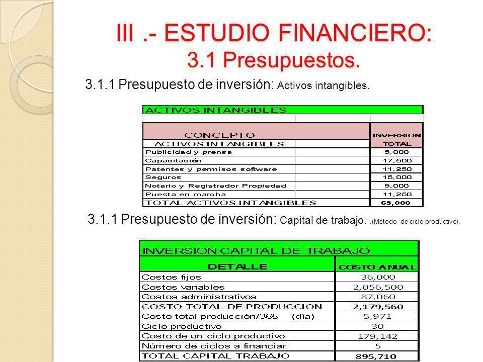 III.- ESTUDIO FINANCIERO: 3.1 Presupuestos. 3.1.1 Presupuesto de inversión: Activos intangibles. 3.1.1 Presupuesto de inversión: Capital de trabajo..(