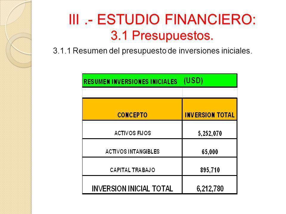 III.- ESTUDIO FINANCIERO: 3.1 Presupuestos. 3.1.1 Resumen del presupuesto de inversiones iniciales.